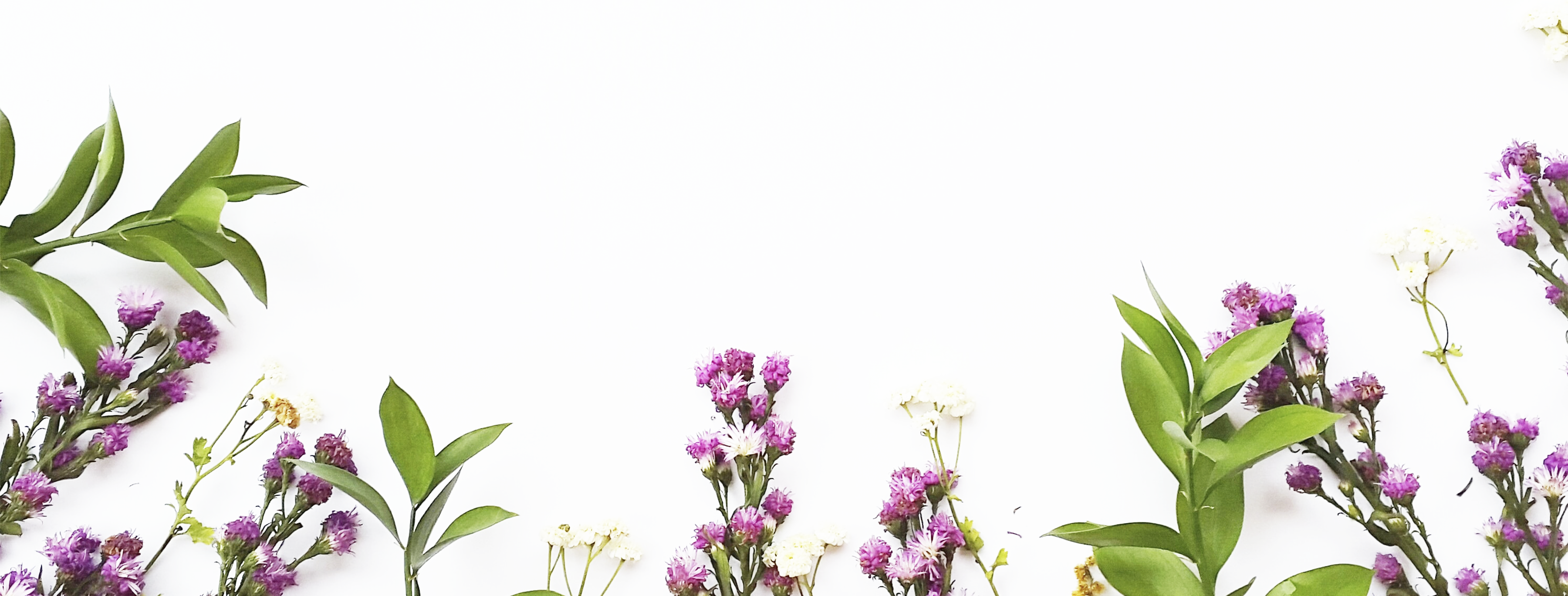assorted-flowers